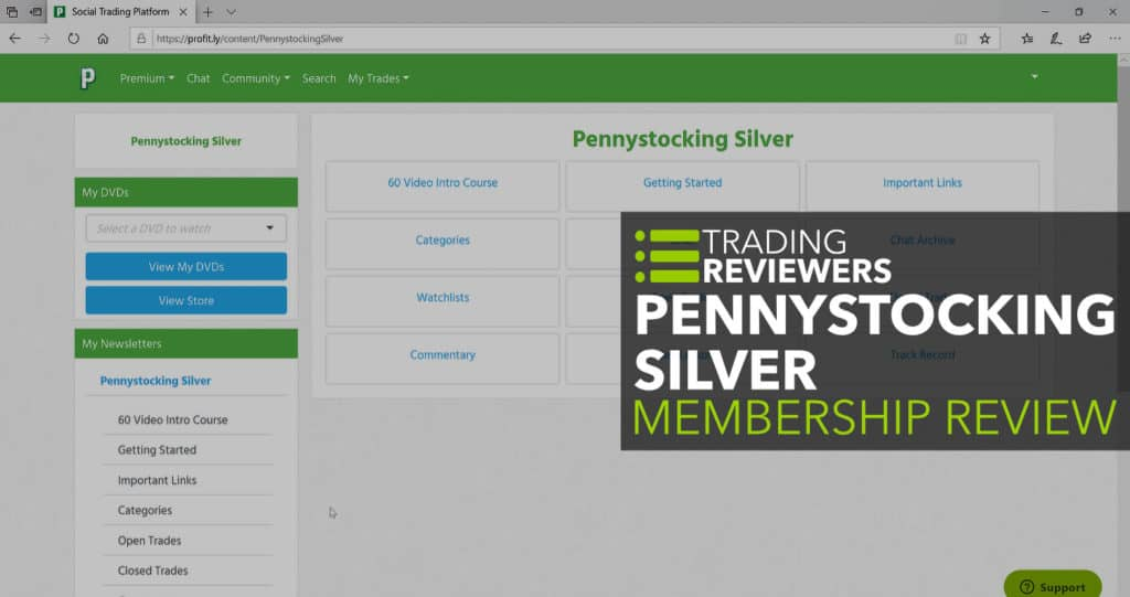 Pennystocking Silver